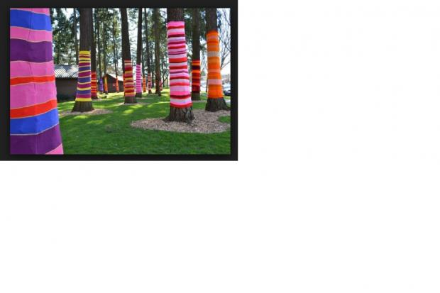 Trees in Romsey's park could be dressed like these in the USA – the home of yarn bombing