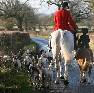 Campaigners want the Government to scrap a ban on hunters using more than two dogs to flush out foxes