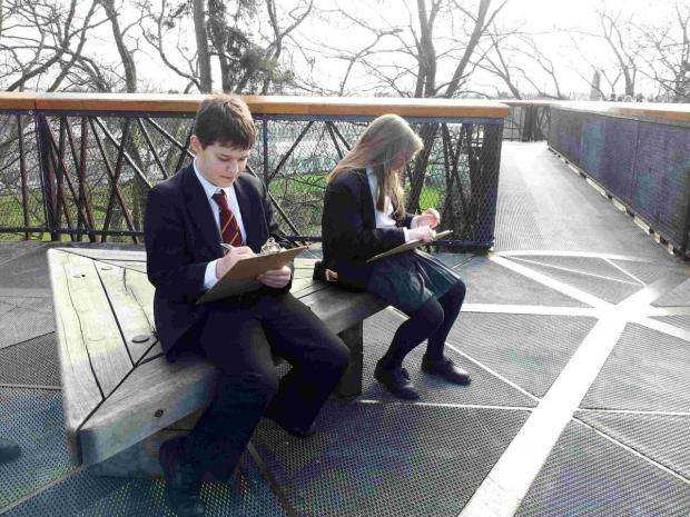 135 Kings' School pupils travelled with their geography teachers to the gardens which included a 15 metre treetop walkway