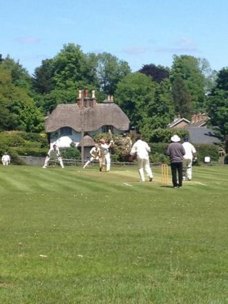 Cricket at Swan Green