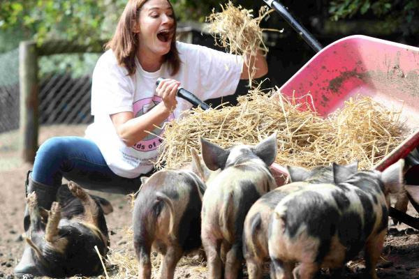 Sarah Parish spent a morning mucking out kune pigs.