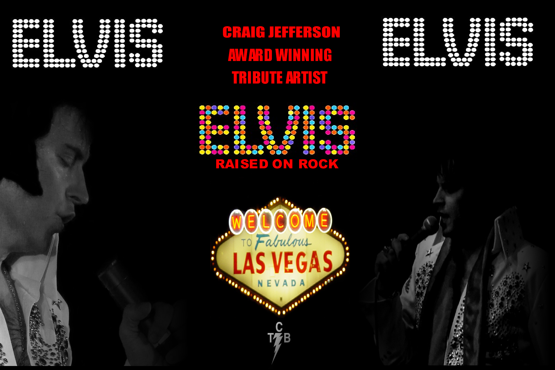 ELVIS Raised On Rock